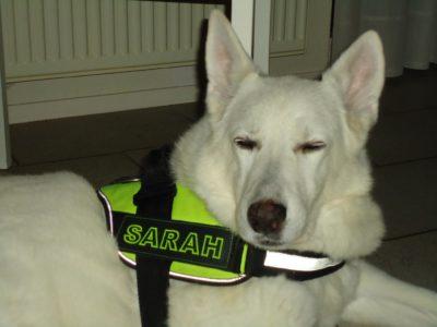 gepersonaliseerde naamlabels voor Sarah