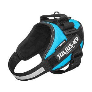 Julius IDC Powertuig kleur Aquamarijn maat Maat 0 met tekstlabels die gepersonaliseerd kunnen worden door K9-label