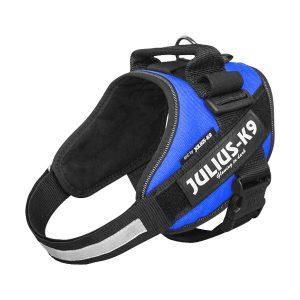 Julius IDC Powertuig kleur Blauw maat Maat 0 met tekstlabels die gepersonaliseerd kunnen worden door K9-label