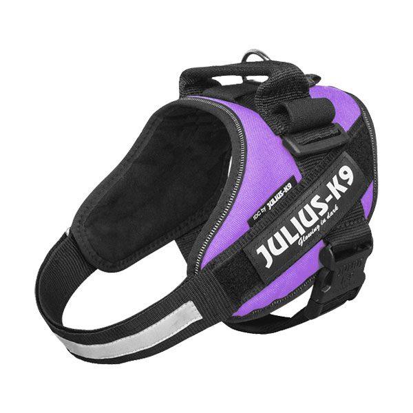 Julius IDC Powertuig kleur Paars maat Maat 0 met tekstlabels die gepersonaliseerd kunnen worden door K9-label