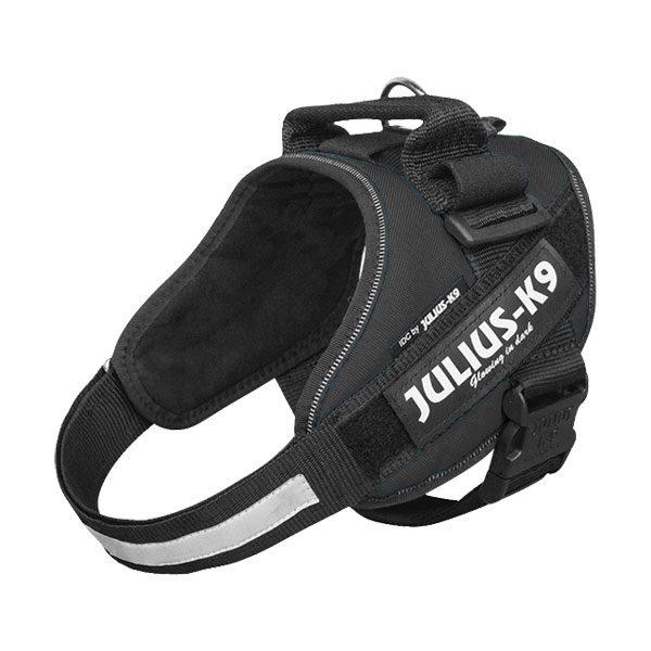 Julius IDC Powertuig kleur Zwart maat Maat 0 met tekstlabels die gepersonaliseerd kunnen worden door K9-label