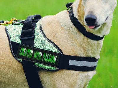 Gepersonaliseerde naamlabels voor alle merken hondentuigen met velcro met passie gemaakt